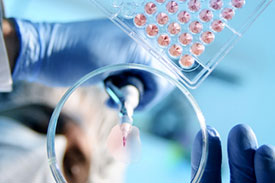 Analytical services support for life sciences and related industry