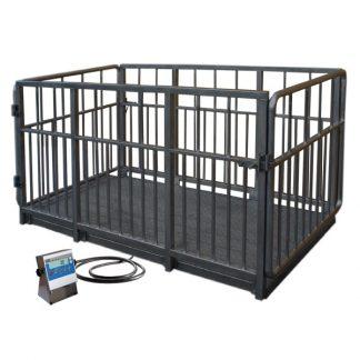 WPT 4I/S livestock scales