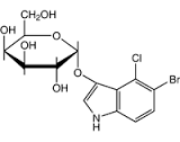 5-Bromo-4-Chloro-3-Indolyl-a-D-Galactopyranoside (X-a-Gal) for molecular biology, 99%