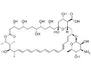 4-Amino-1,2,4-Triazole pure, 98%