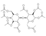 Acylase 1 (ACY1) ex. Porcine Kidney, 1000U/mg